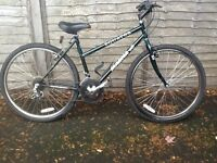 Magna equator ladies/girls mountain bike 15 speed Ideal Christmas from Madeley, Telford
