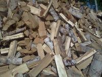 Birch firewood
