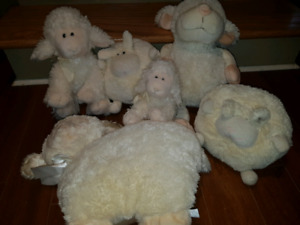Toutous moutons