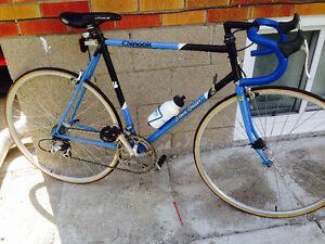 Steve Bauer Chinook road bike