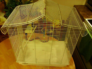 Bird Cage with accesseries