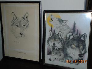 wolf pic London Ontario image 2