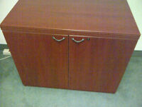 Lacasse collection - 2 door Armoire (Office cabinet)
