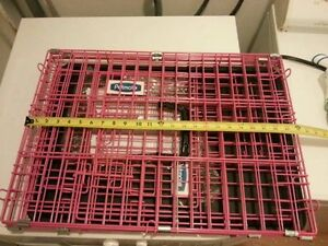 cage/crate for small dog/petit chien