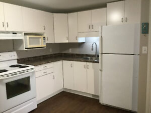 Not a Typical Basement Apartment - For Rent - NC Welland Campus