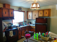 Vintage Kitchen For Sale