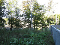 Lot 2 Acers - Wentworth,Qc. Foundation 32'x28', 120'well,septic