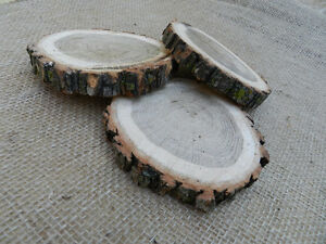 Wood Rounds / Slabs / Coasters / Slices