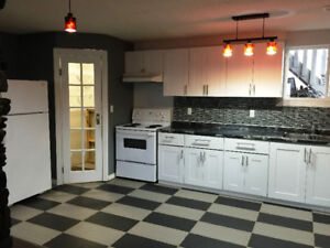 Modernized 2 bdrm suite North side 11555 139 Ave UTILITIES INC