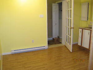 Bright 1 Bedroom in Paradise St. John's Newfoundland image 3