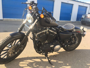2010 Harley Davidson iron 883 Low km and stage one