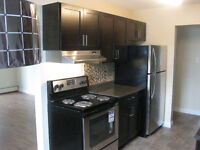 10414 77 Ave, South Side, Close to U of A, Available Now!!!