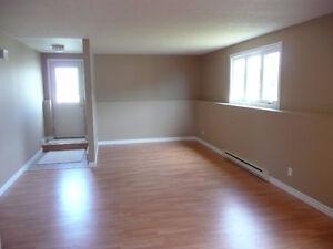 Bright, spacious open concept 2 bedroom basement apt in Kilbride