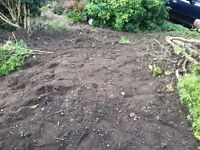 Free - topsoil for collection