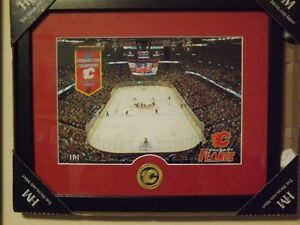 NEW NHL Framed Calgary Flames Hockey Arena Photo and Minted Bron