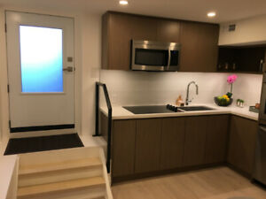 BRAND NEW - RENOVATED 1 bedroom BSMT apt steps from the danforth