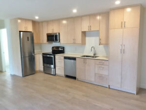 $1150 / 1br -1 Bedroom Modern Apartment Penticton -Pet Friendly