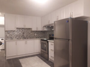 Brand New 1 Br Bsmnt Apt for Rent-Bovaird/ Dixie