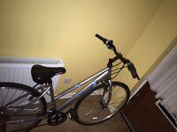 """16/17"""" apollo excelled women's hybrid bike"""