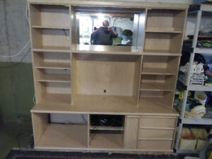 Wall Unit for Entertainment  ***HUGE PRICE DROP***