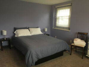 Bright large bedroom in 2Bd suite