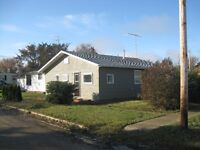 Why Not Rent to Own in Bruno, Great Opportunity to Own Your Home
