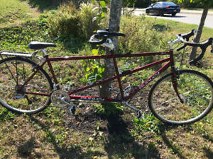 Tandem bike - Burley Made in USA frame - used but awesome shape