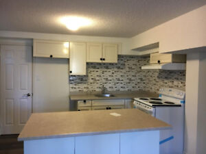 2 Bed room renovated walkout basement / John St and Leslie St