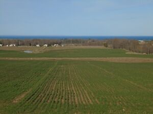 CASH CROP LAND IN COTTAGE COUNTRY