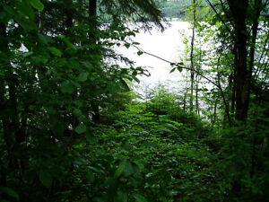 Terrains de villégiatures riverains - Rivière Saguenay Saguenay Saguenay-Lac-Saint-Jean image 2