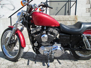 1997 Sportster custom 1200 *lots of chrome London Ontario image 6