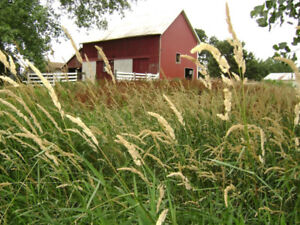 ** WANTED ** Professional couple looking for acreage