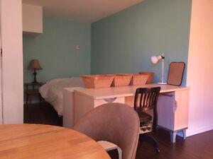 Studio semi autonome complètement meublé Saguenay Saguenay-Lac-Saint-Jean image 6