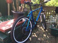Carrera Vulcan mountain bike