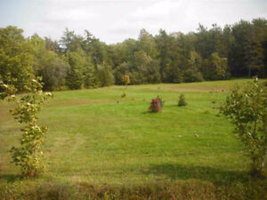 4.7 Acres on Keltic Drive in Leitches Creek