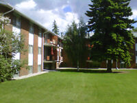 Large 1 BDR - Near Southgate and U of A - 1 MONTH FREE, MUST SEE