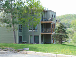 Deerhurst, Muskoka -  Luxury 2 bed sleep 6  Vacation Club condos