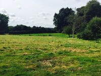 Grazing Land for rent with water