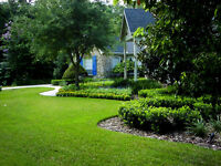 SMITH and SMITH LAWN and YARD MAINTENANCE