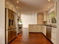 HIGH END KITCHENS AT PRICES COMPETITIVE TO IKEA