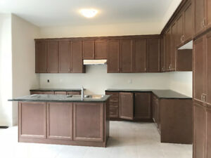 New solid maple kitchen cabinets/island/granite