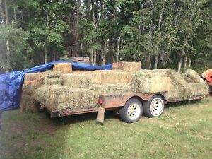 Hay forsale square bales