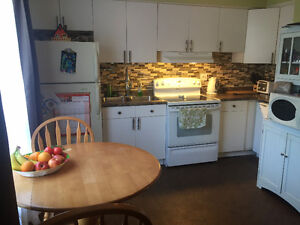 Very Peaceful Residential 2 free parking spot,5min to DOWNTOWN London Ontario image 10