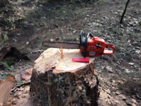 Tree service tree cutting felling service d'arbres storm clean