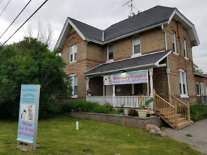 Ajax West Veterinary Clinic -Dog & Cat Clinic now open in Ajax 3