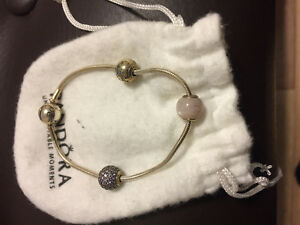 Pandora bracelet with charms.. just offer and we'll go from ther