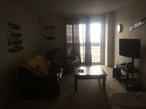 2 Bedroom Apartment Ottawa/Gatineau area- May 1st