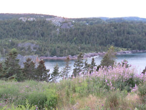 …1.24 ACRE OCEANFRONT..INCREDIBLE VIEWS..AVONDALE. St. John's Newfoundland image 3