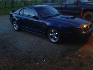 2002 Ford Mustang gt low km