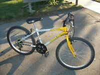 """24"""" Quality Raleigh Mountainbike for person over 8yr&under 5'3"""","""